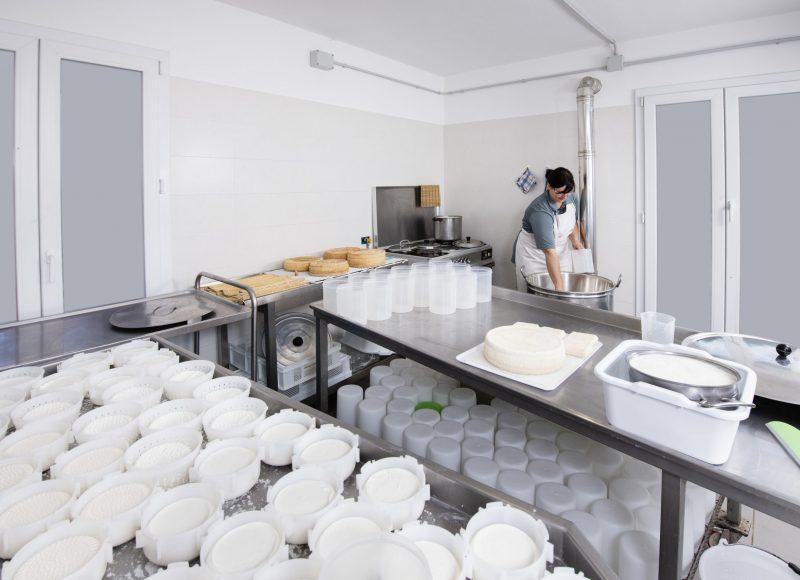 Une femme coopératrice qui fabrique du fromage