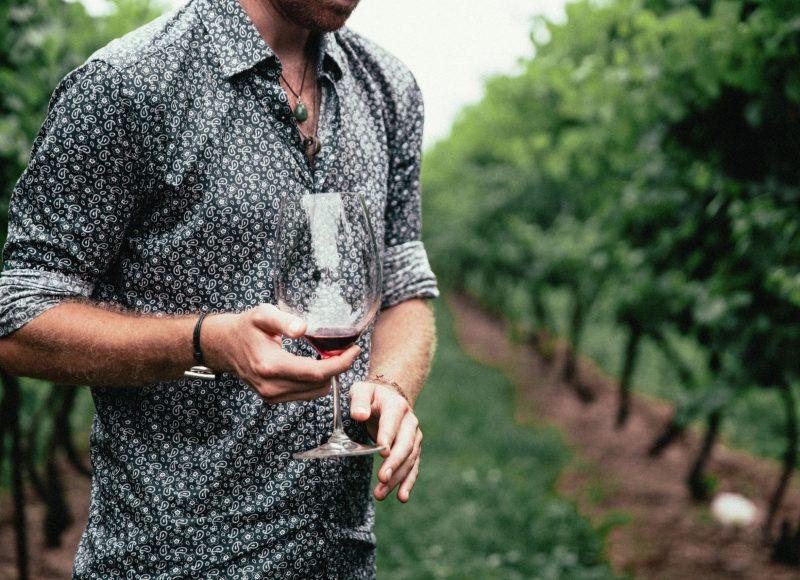 un homme dans une vigne qui tient un verre de vin